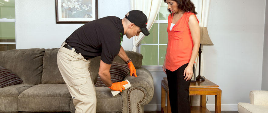 Independence, OH carpet upholstery cleaning